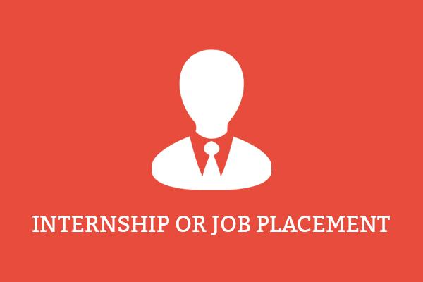 Job / Internship